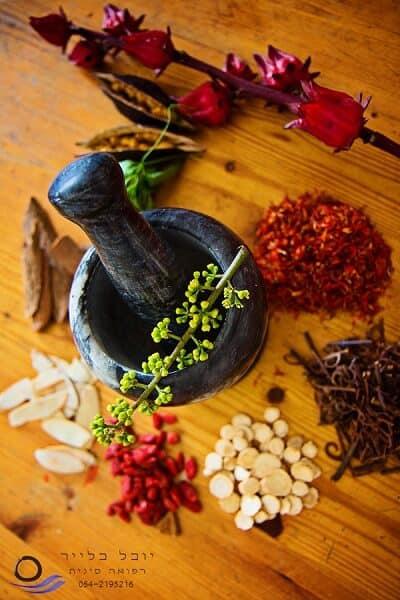 רפואה סינית תזונה טעימה