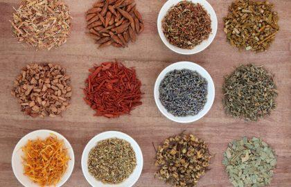 סוגי צמחי מרפא בעלי סגולות רפואיות
