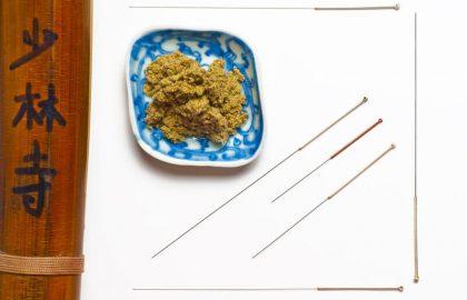רפואה סינית על קצה המזלג